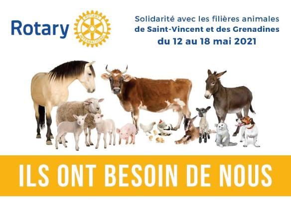 Auf dem Poster sind neben den Rotary-Logo auch viele Haustiere zusehen: ein Pferd, eine Kuh, ein Esel, ein Ferkel, Schafe, Ziegen, Hühner, eine Katze und ein Hund.