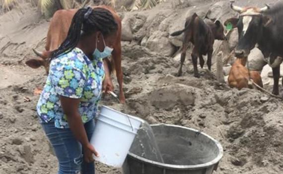 Eine Frau gießt mit einem Eimer Wasser in einen großen Trog, im Hintergrund warten Rinder, um sie herum ist alles mit Asche bedeckt.
